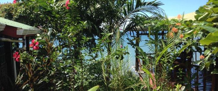 Ranchito Las Contingas jardin