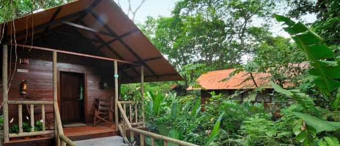 Aninga Hotel & Spa Bungalow extérieur jardin verdure bois