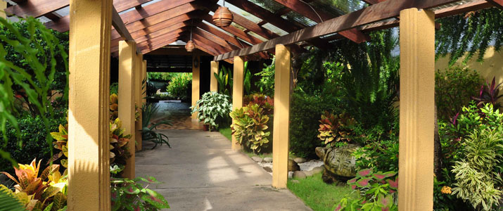 La Punta Puntarenas Hotel Costa Rica Extérieur Plante Couloir