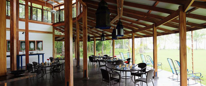 Blue Osa Hotel Corcovado Costa Rica Hotel Terrasse