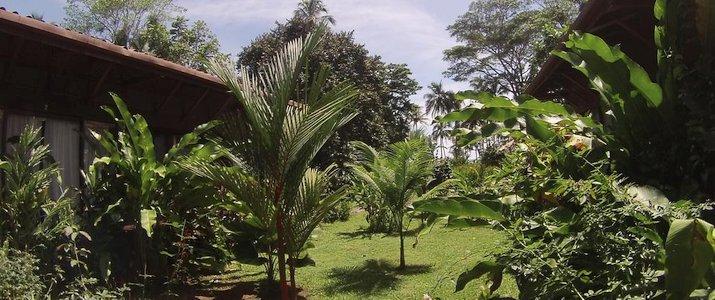 Bâtiment Kenaki Lodge Caraïbes Sud Cahuita Nuit Bois Nature Jardin