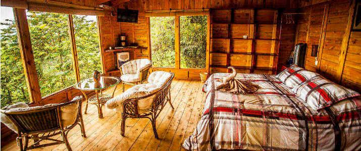 Paraiso Del Quetzal Hotel Costa Rica