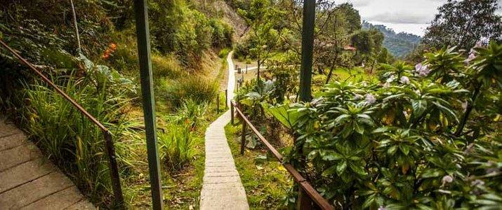 Paraiso Del Quetzal Hotel Costa Rica Chambre Lit