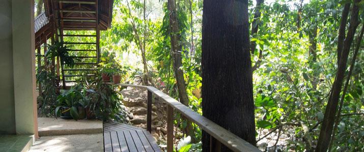 El Bosquecito Pacifique Sud Uvita Costa Rica Hotel Nature