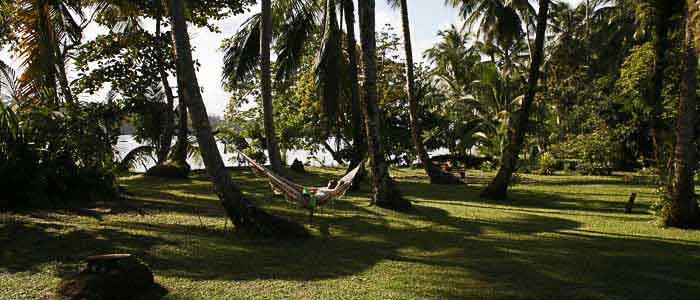 Hotel Miss Junie's Iguana Verde jardin nature hamac