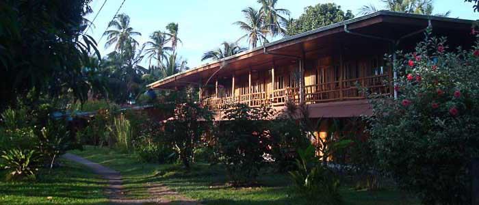 Hotel Miss Junie's Iguana Verde bungalow bois jardin
