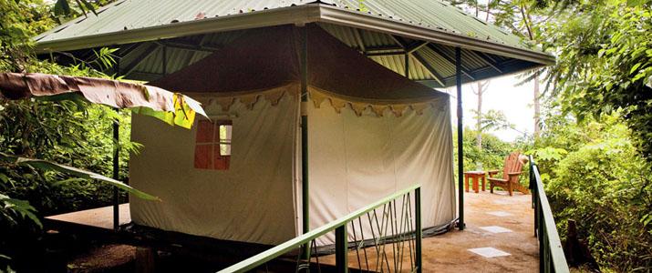 Rancho DiAndrew Uvita Pacifique Sud Costa Rica Hotel Tente