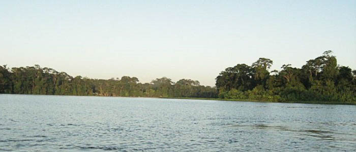 Hotel Rana Roja Vue Mangrove paysage nature