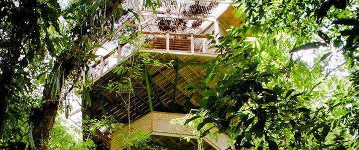Finca Bellavista - Maison dans les arbres