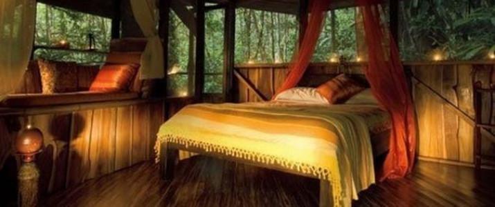 Finca Bellavista - Maison dans les arbres 2