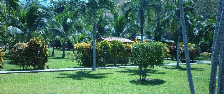 Guanacaste LodgeGuanacaste Playa Flamingo Jardin tropical et piscine