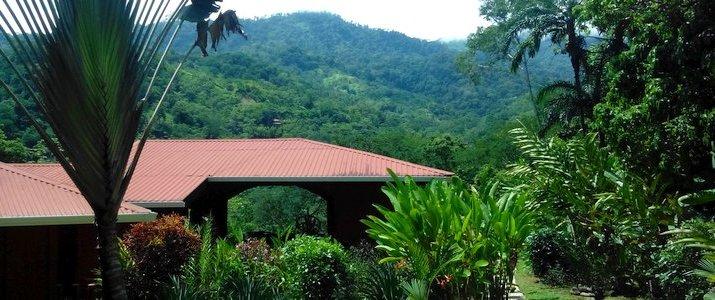 montagne nature jungle vue la cacatua hotel costa rica pacifique sud uvita