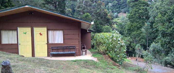 Cabinas Miriam's Quetzals San Isidro del General San Gerardo de Dota Chirripo Montagne