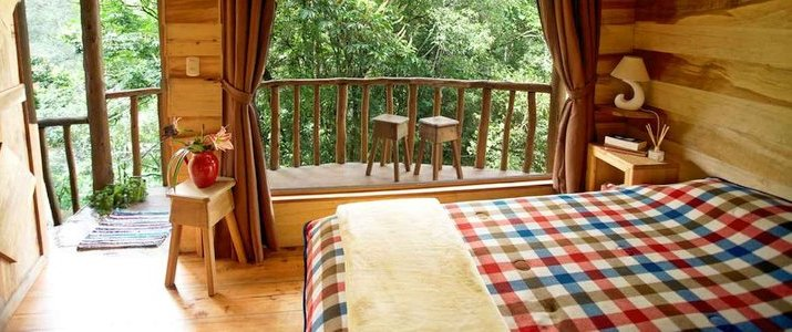Cedrela Ecolodge San Isidro del General Copey Montagne Foret Hotel Chambre vue