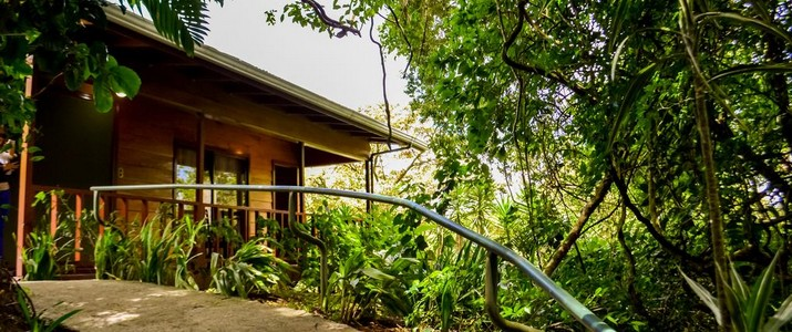Jaguarundi Lodge chemin allée