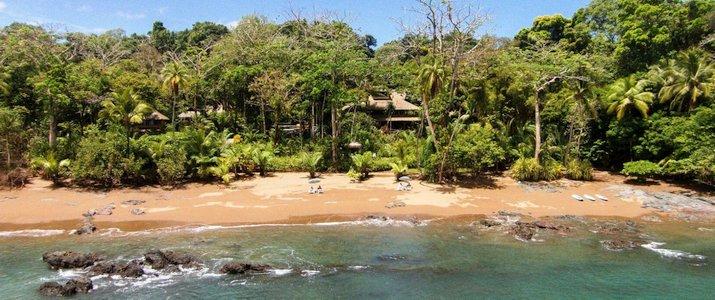 Copa de Arbol Osa Corcovado Drake Costa Rica Hotel