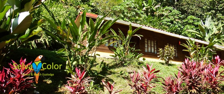 Selva Color - Forest & Beach Ecolodge Quebrado Ganado bungalow