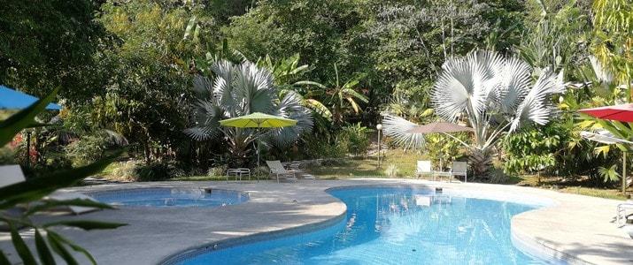 Selva Color - Forest & Beach Ecolodge Quebrado Ganado piscine
