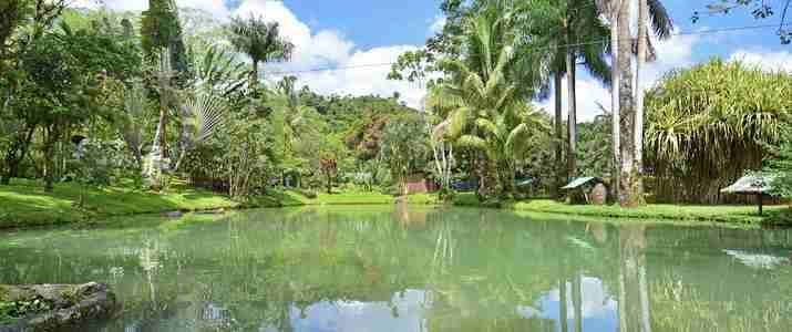 Chachagua Rainforest Ecolodge Arenal étang