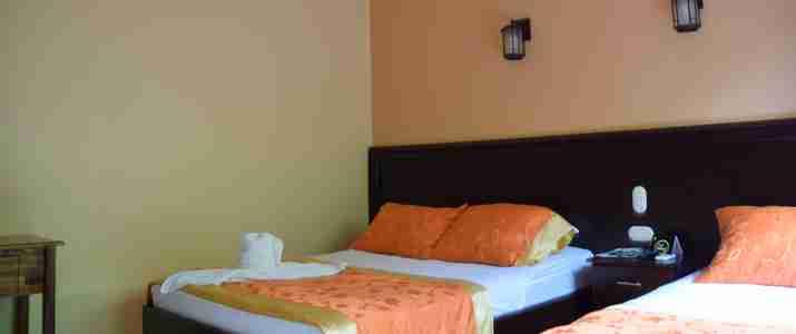 Mussaenda Arenal chambre