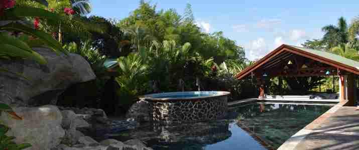 Mussaenda Arenal piscine