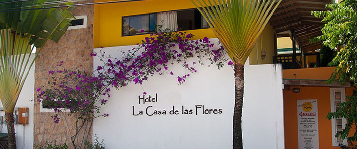 Las Casa de Las flores Caraïbes Sud Cahuita façade palmier soleil