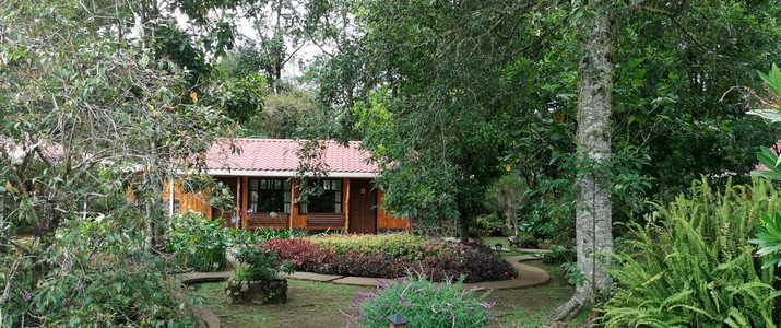 Hotel de Montaña Suria San Gerardo de Dota bungalow