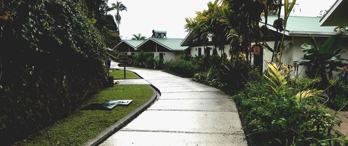 Station biologique las cruces jardin de wilson san vito cabinas