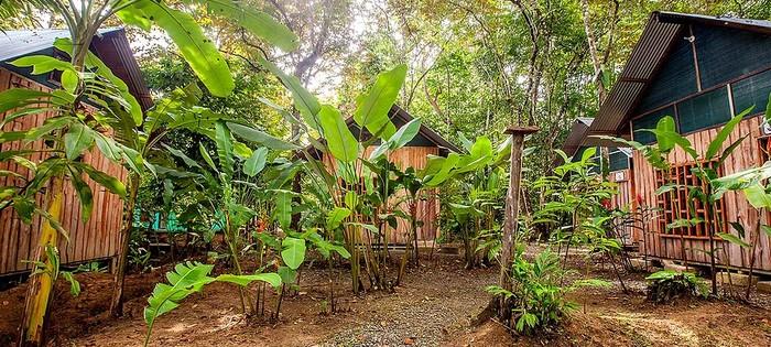 Bungalows Cacao Monkeys Puerto Jimenez