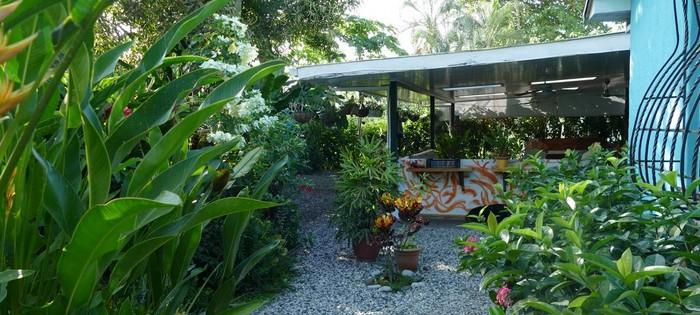 Jardin Casa Celeste Puerto Jimenez