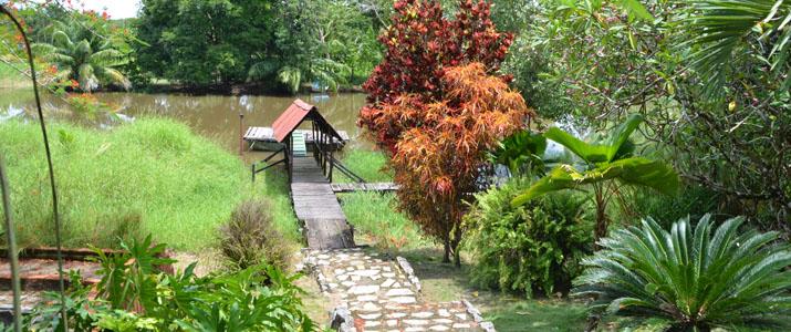 Veragua River House Hotel Corcovado Costa Rica Vue
