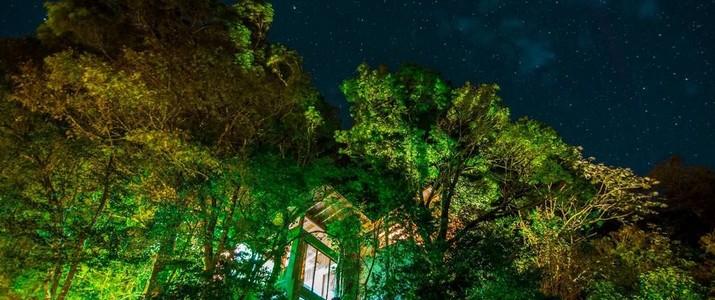 Casa Ficus Monteverde