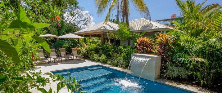 J5 Luxury Villa_pisicne