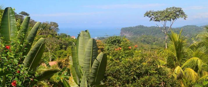 Chalet_Tropical_vue