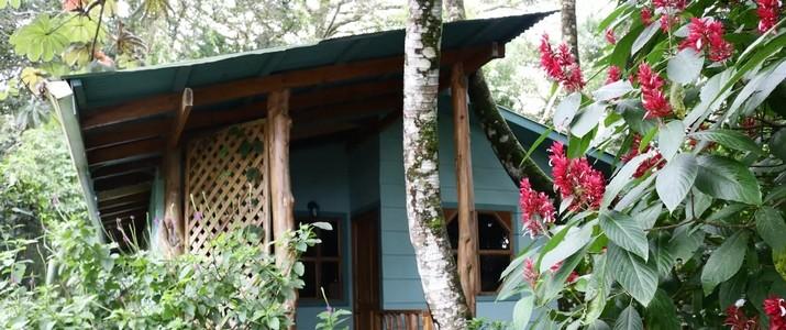 Monteverde Forest Hideaway_maison