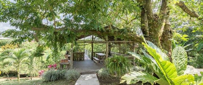 Arenal Luxury Paradise - Jardin
