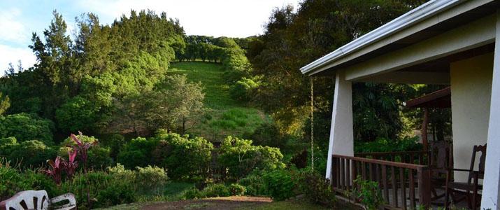 Belcruz B&B Monteverde Réserve Santa Elena Terrasse et Jardin