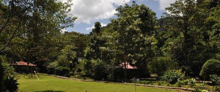 Sueño del bosque Hotel Costa Rica Exterieur