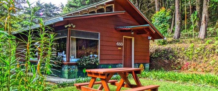 Los Pinos Cabinas y Jardines Monteverde Santa Elena Rainforest Forêt de Nuages Bungalow