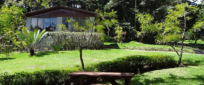 Los Pinos Cabinas y Jardines Monteverde Santa Elena Rainforest Forêt de Nuages Jardin