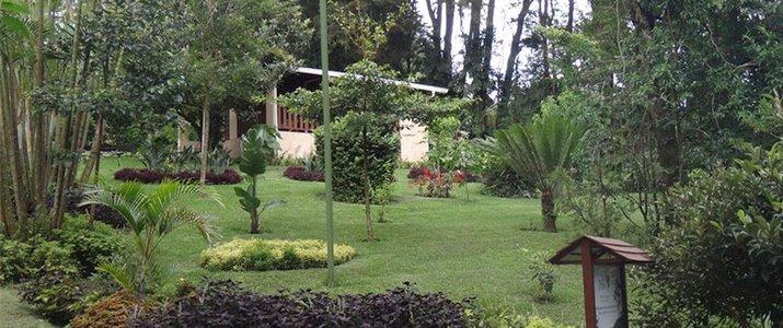 Los Pinos Cabinas y Jardines Monteverde Santa Elena Rainforest Forêt de Nuages Jardin Tropical
