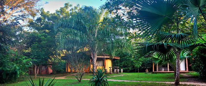 Mauna Loa Guanacaste Playa Avellanas jardin en pleine nature