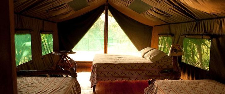 Rafiki Safari Lodge Dominical Pacifique Sud Costa Rica Hotel Chambre