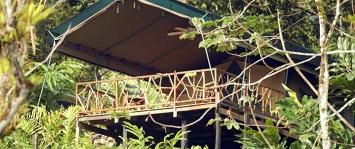 Rafiki Safari Lodge Dominical Pacifique Sud Costa Rica Hotel Vue