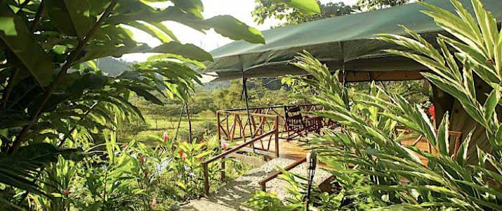 Rafiki Safari Lodge Dominical Pacifique Sud Costa Rica Hotel