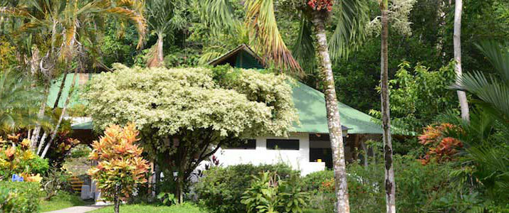 Villas Rio Mar Pacifique Sud Dominical Costa Rica Hotel