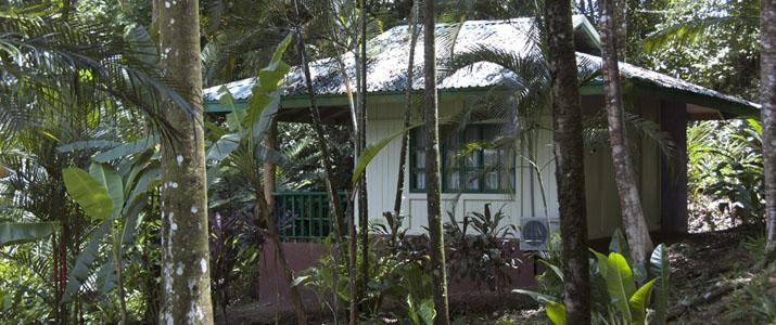 Villas Gaias Pacifique Sud Ojochal Costa Rica Hotel