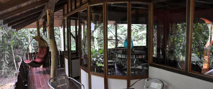 El arbol Caraïbes Sud Manzanillo maison dans les arbres terrasses en pleine nature
