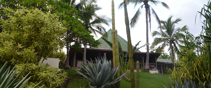 Casas Pelicano jardin