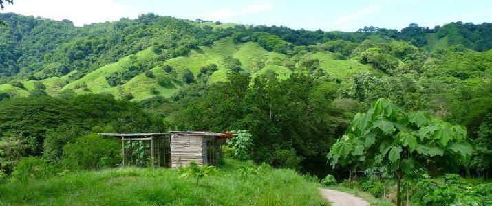 Finca Cantarana Nicoya Sud Jiracal Montaña Grande Vue Jungle Casita